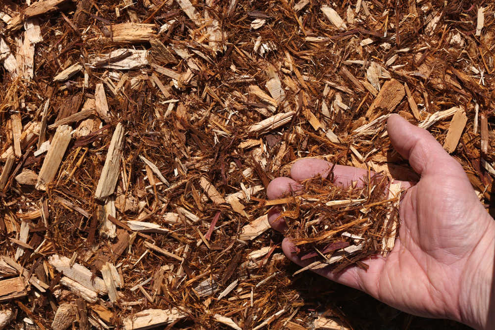 White Cedar Mulch