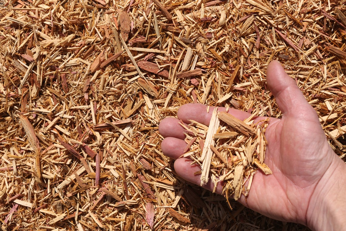 eastern red cedar mulch hand