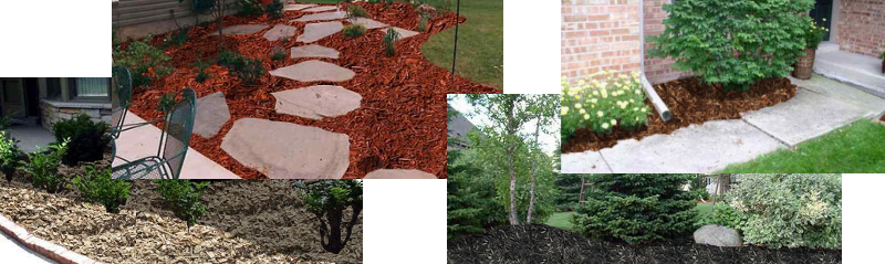 mulch examples