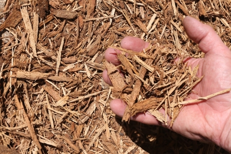 String Oak Bark Mulch