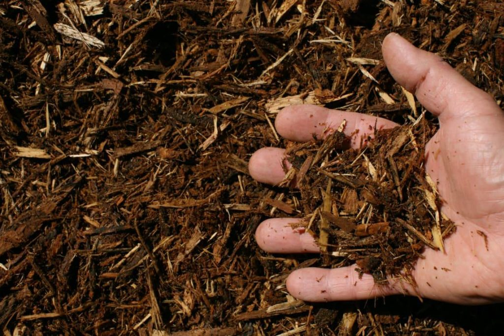 oak bark mulch single shredded hand 1024x683