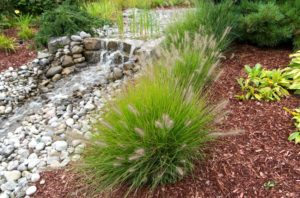 Bark mulch and stone mulch: each have their purposes