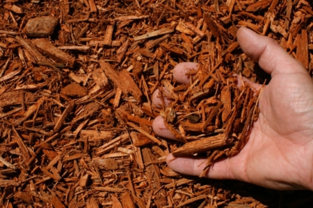 burnt orange shredded hardwood mulch hand 1024x683 960x300