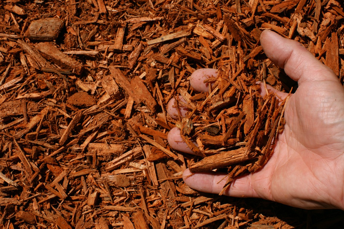 burnt orange shredded hardwood mulch hand
