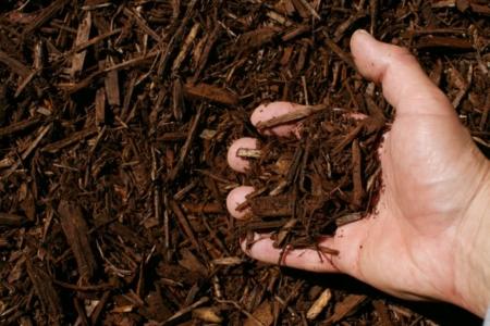 dark brown shredded hardwood mulch hand 1024x683 960x300
