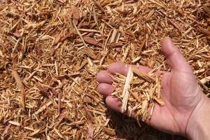 eastern red cedar mulch hand 300x200