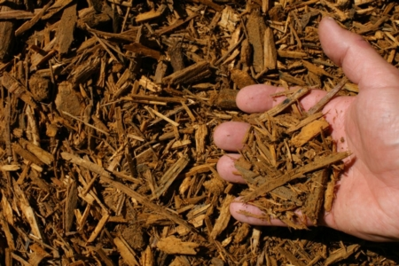 gold shredded hardwood mulch hand 1024x683 960x300