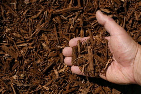light brown shredded hardwood mulch hand 1024x682 960x300