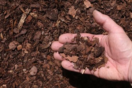 red pine bark mulch double shredded hand 1024x683 960x300