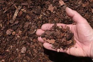 red pine bark mulch double shredded hand 300x200