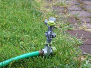 sprinkler watering the grass 300x225